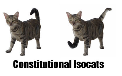 On Cats, Part 1: Conformations and Configurations
